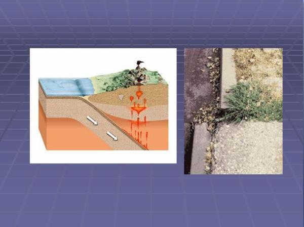 Slide 19 Teori Tektonik Lempeng